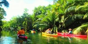 tropical sea kayaking costa rica