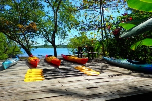 tropical sea kayaking vacations in costa rica (16)