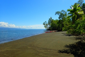 tropical sea kayaking vacations in costa rica (20)