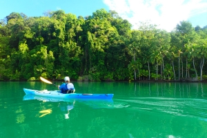 tropical sea kayaking vacations in costa rica (5)