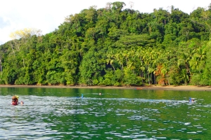 tropical sea kayaking vacations in costa rica (8)